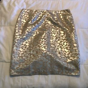 Unique and Shiny Skirt